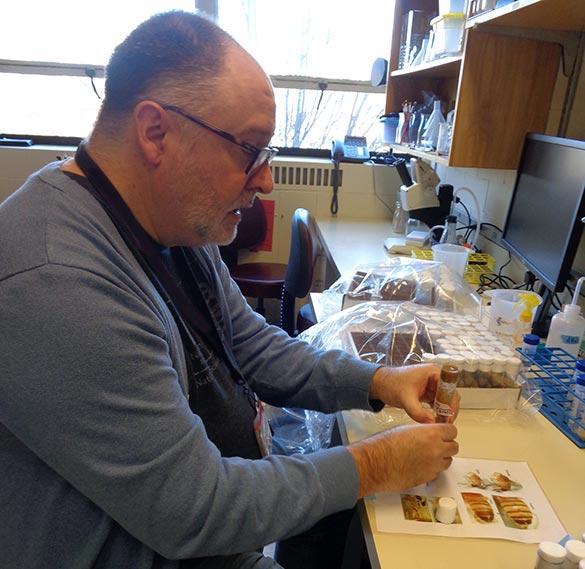 Teacher Using Lab Tools