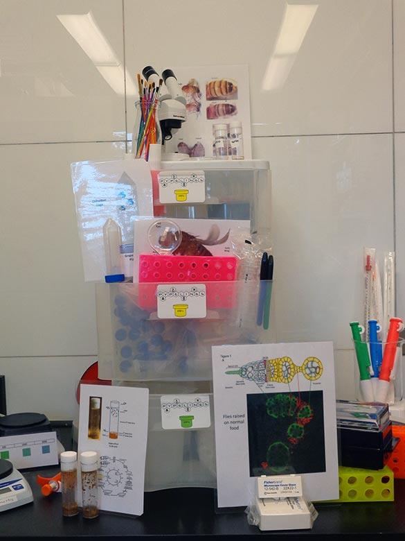 Programs - eClose@Home Sample Kit